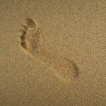 seaside-915046_640